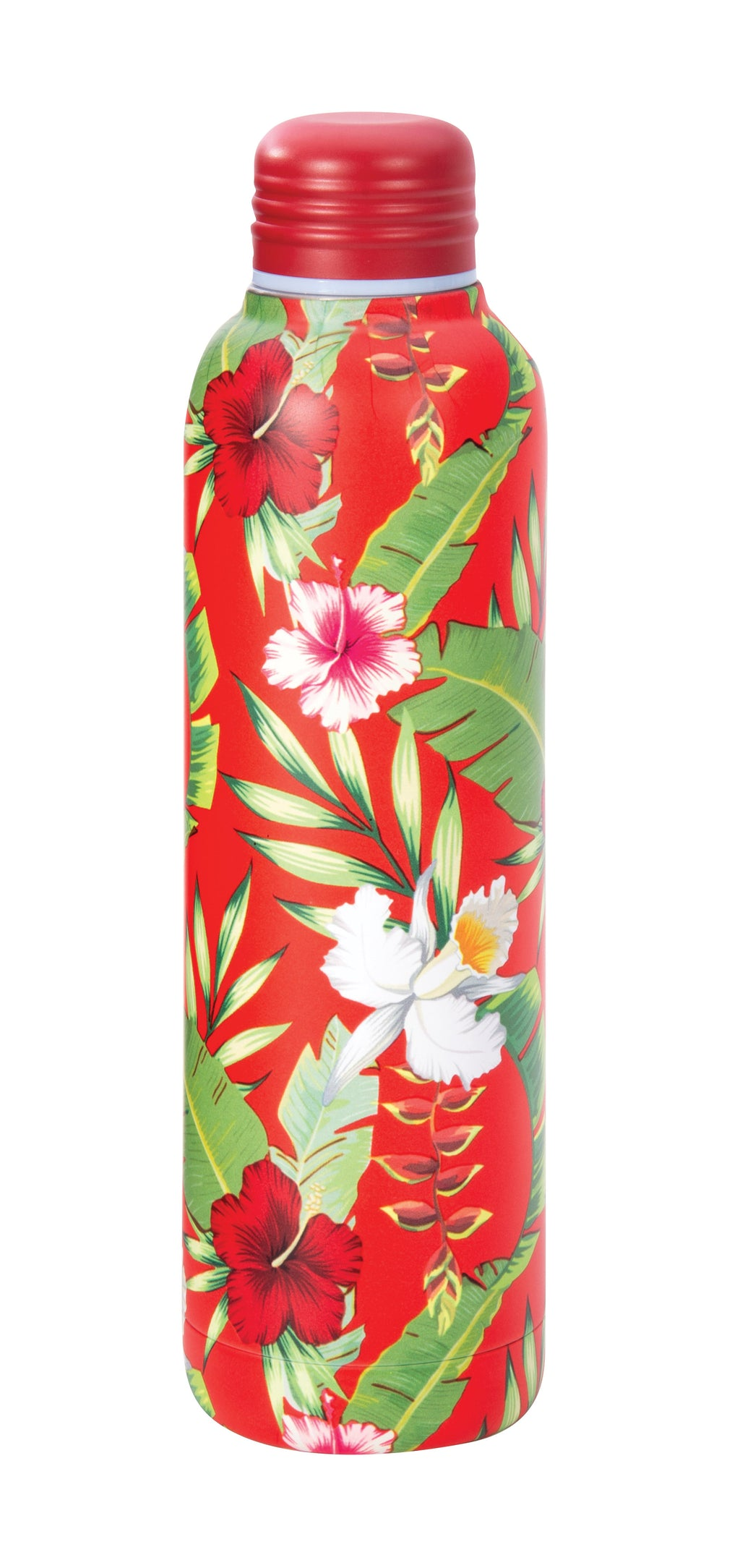 IS GIFT Insulated Stainless Steel Water Bottle 500ml - Tropical Red,Stainless Steel Water Bottle, IS Gift - Yum Yum Store