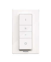 Philips Hue Dimmer switch.