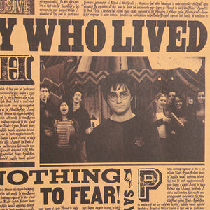 "Harry Potter Decorative Poster "" Boy Who Lived"" - That New Trend"