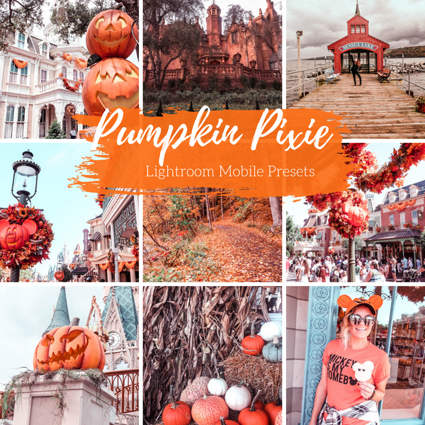 Pumpkin Lightroom Mobile Preset, Fall Lightroom Presets, Pumpkin Pixie Mobile Preset