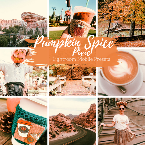 Pumpkin Spice Lightroom Mobile Preset, Fall Mobile Preset