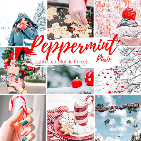 Peppermint Pixie Holiday Winter Cool Mobile Presets, Food Lifestyle and Travel Blogger Lightroom Presets