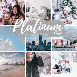 Platinum Silver Ashy Gray Lightroom Mobile Presets