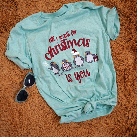 Christmas Star Wars Porg Unisex T-Shirt, All I want for Christmas is You.  Disney Inspired Tee