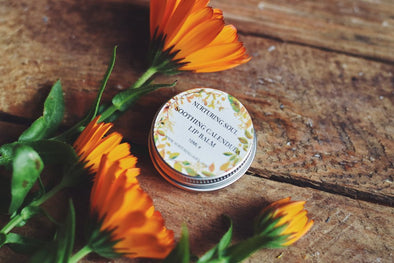 Soothing Calendula & Sweet Orange Lip Balm - Oak Lane