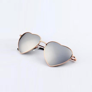 Silver Fox Sunglasses - Youthly Labs