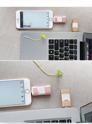 Flash Drive For iPhone/ipad OTG Pen Drive