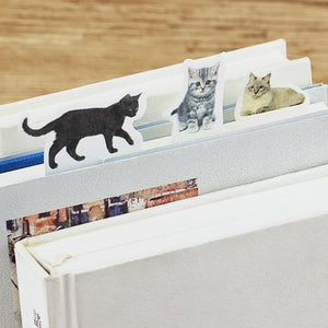 All Cats Sticky Notes | 4 Pads - All Written Down