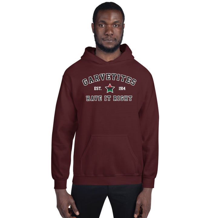 Garveyites Have It Right Unisex Hoodie/Sweatshirt