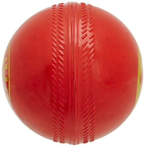 SS Gutsy Synthetic Practise Cricket Ball