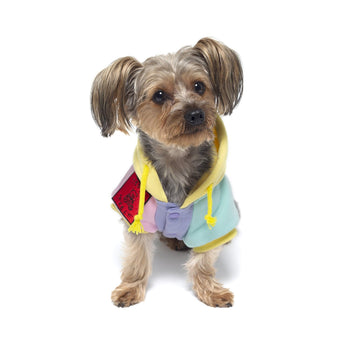 Color Block Dog Hoodie