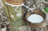 Natural Hevea Rubber
