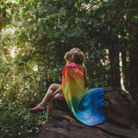 Rainbow Silk Cape