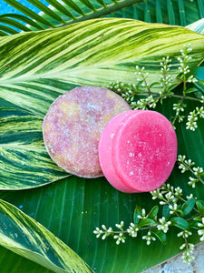 Shampoo and Conditioner Bar with Travel Case