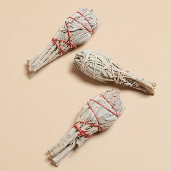 White Sage Torch Smudge