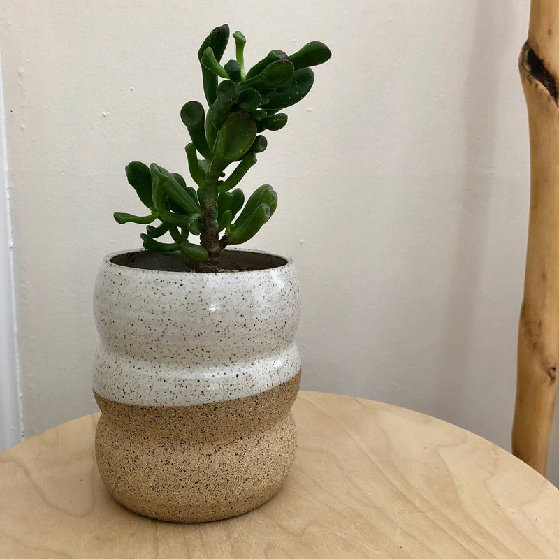 Form Planter no. 4 speckled w/ drip tray
