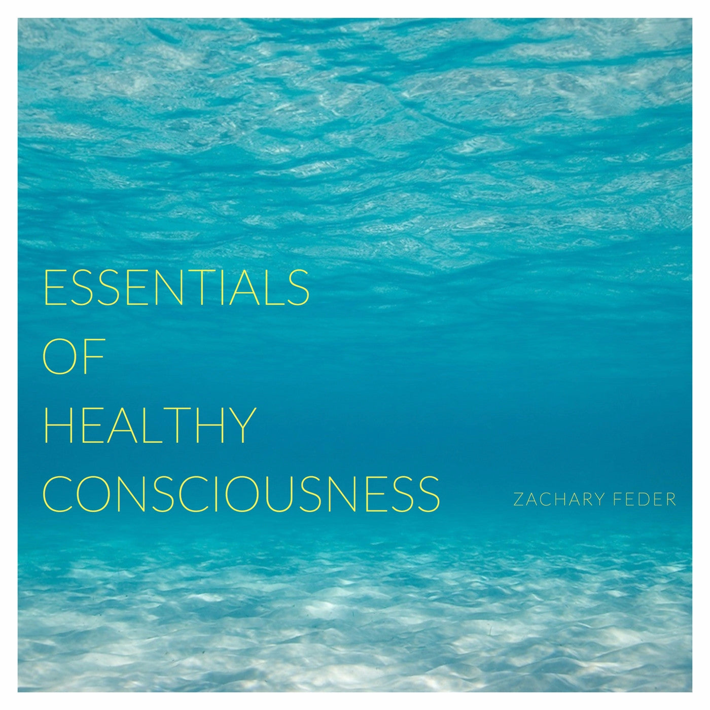 Essentials of Healthy Consciousness: Part 1 - Digital Download