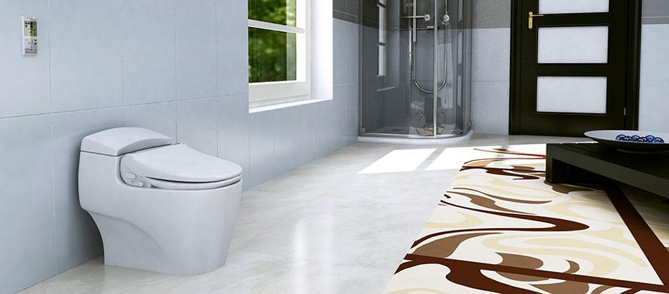 Superb Advanced Bidet Toilet Seat Bliss Bb 1700 Biobidet Caraccident5 Cool Chair Designs And Ideas Caraccident5Info