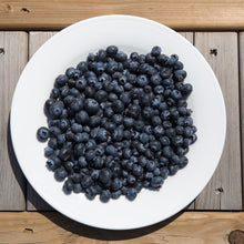 Freeze Dried Blueberries - OutdoorPantry.com