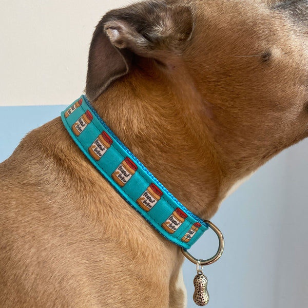 Peanut Butter Dog Collars