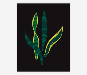 Sanseveria by Always With Honor - Archival Print