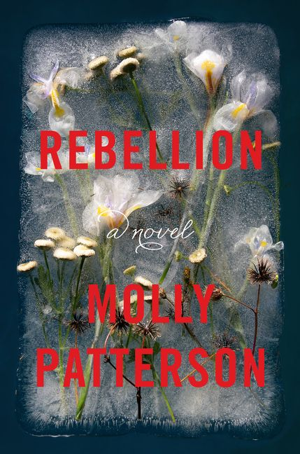 Rebellion: A Novel by Molly Patterson