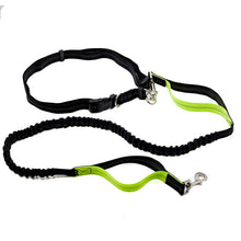 Hands Free Elastic Dog Leash - AllstarProducts