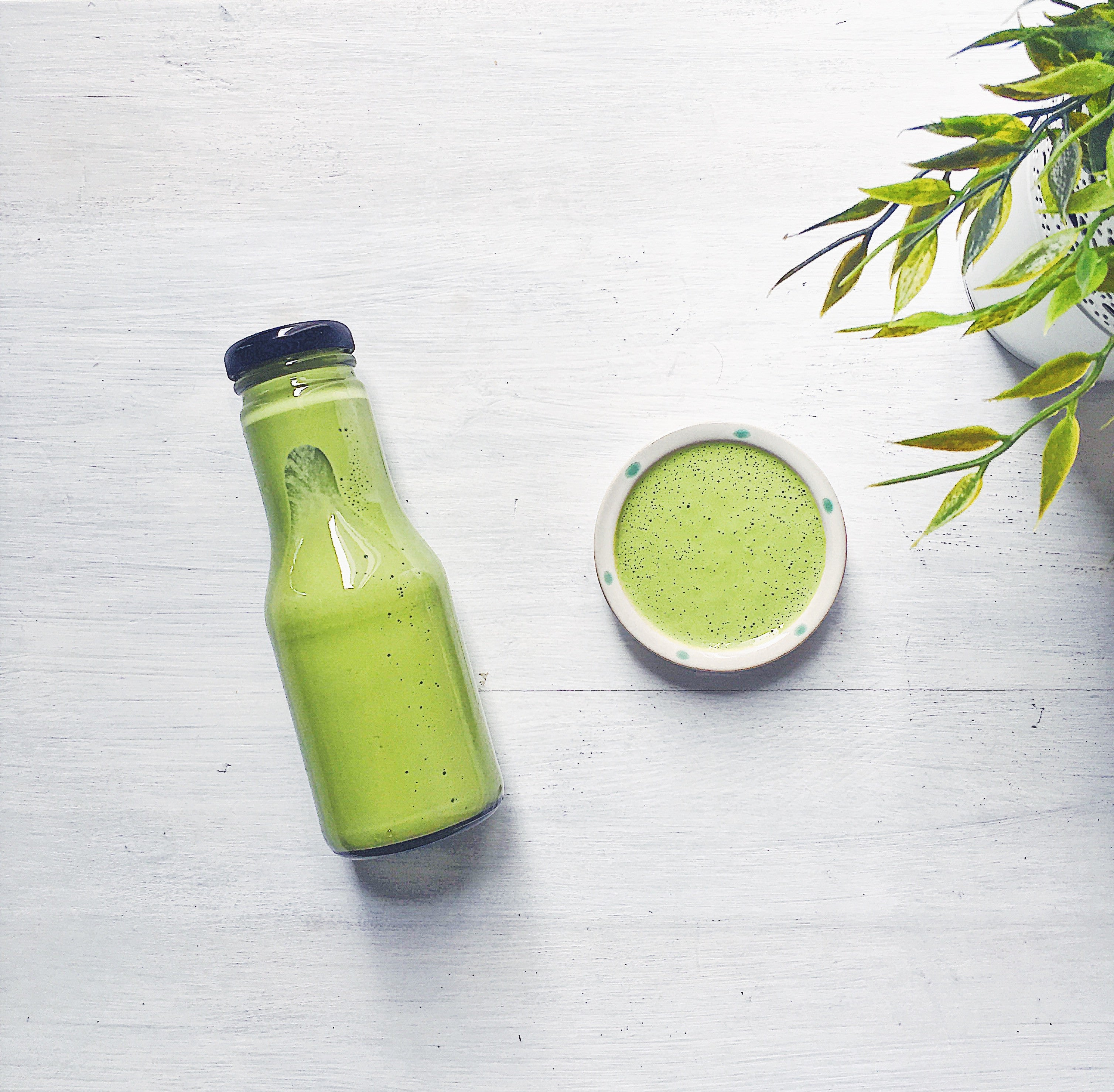 Dressings & Dips | Basil Herb Dressing