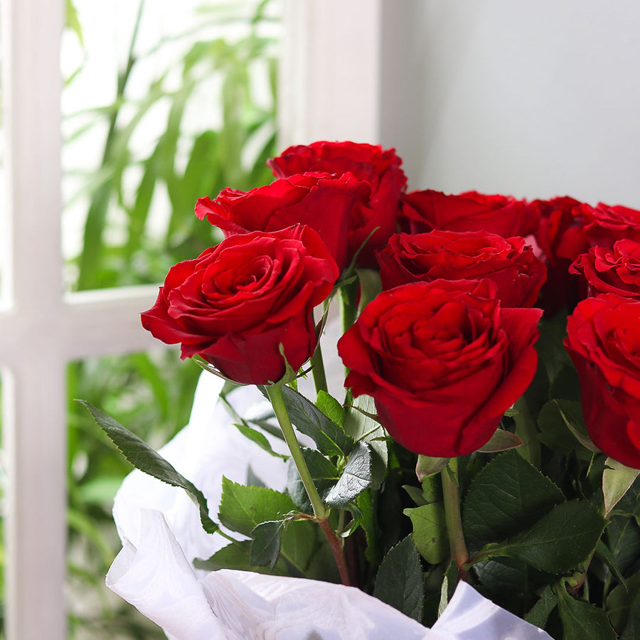Dozen Imported Roses - TCS Sentiments Express