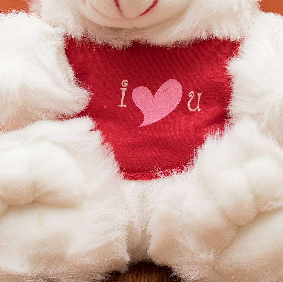 I Love You Bear (12 Inch) - TCS Sentiments Express
