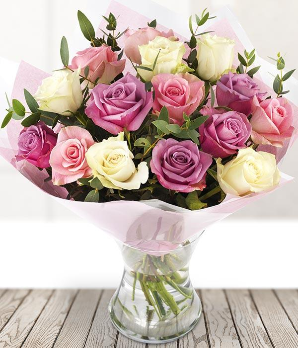 Pink & Cream Roses - TCS Sentiments Express