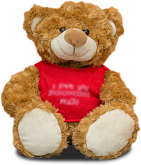 Brown Bear with Tshirt