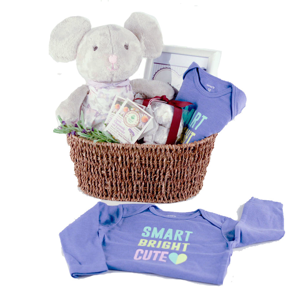Mom and baby gift basket sentiments express international mom and baby gift basket sentiments express negle Image collections