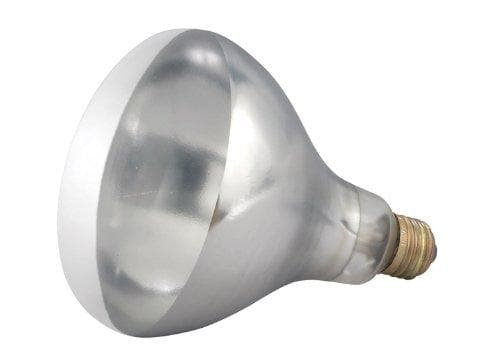 Winco Replacement Bulb for EHL-2, 250W, 2.1A, Clear - Omni Food Equipment