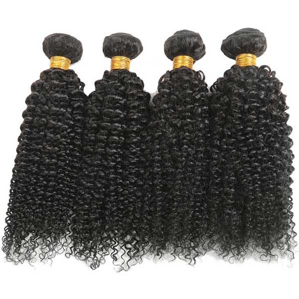 For Licensed Pros Only - BIANCA 4B Kinky Curly Sew In Bundles