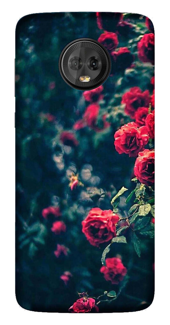 Nature Collection Back Cover for Moto G5s Plus