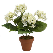 Artificial Snowball Bush Cream 28cm - Potted Plant