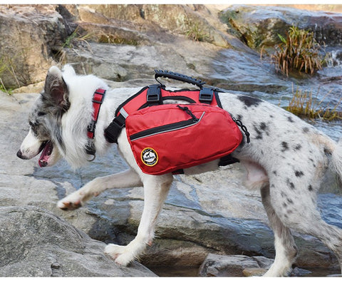 Performance Dog Backpack