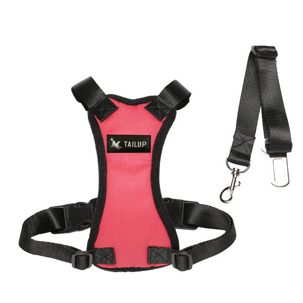 Total Protection Car Seat Belt and Harness
