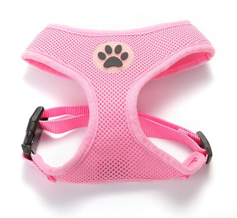 Vibrant Pet Harness