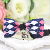 Beautiful Bow Tie