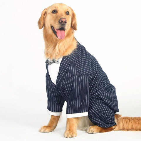 Gentleman Wedding Dog Suit