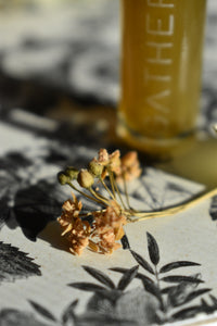 BOTANY'S DAUGHTER - Natural Botanical Perfume - The Plant Lovers' Fragrance