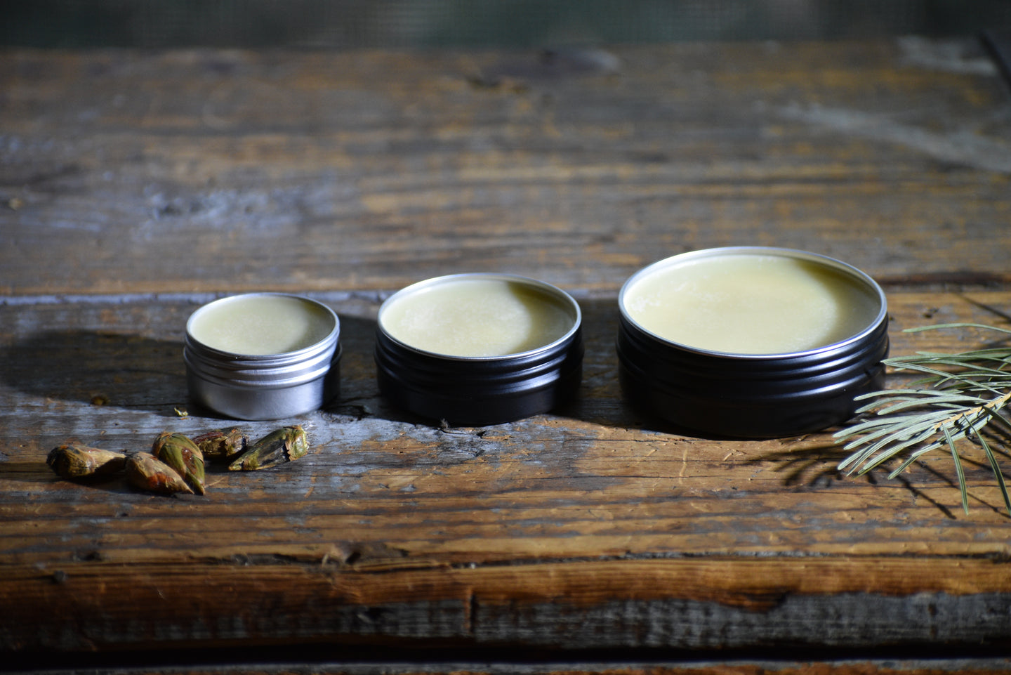 SIGH OF TREES SALVE | Botanical Infused Leaf Lard - Tallow Salve | Poplar . White Fir . Pinon . Sweet Fern
