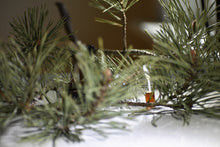 Forest Flora, botanical perfume by Gather, winter forest, pine needles, resins, 100% natural fragrance sample
