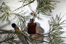Forest Flora, botanical perfume by Gather, winter forest, pine needles, resins, 100% natural fragrance