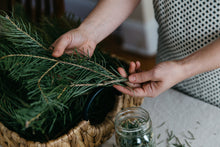 White Fir Gather perfume