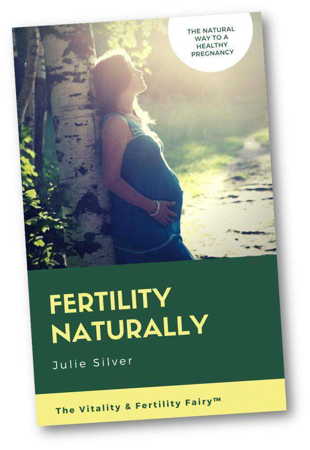 Julie Silver Ebook Download Fertility Naturally Ebook - Conceive Safely & Naturally by Julie Silver