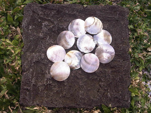 10 pcs Natural Mother of Pearl (MOP) Shell Black