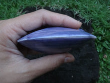 Purple Clam Shell